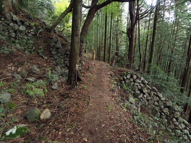 高取城 振り返って見た吉野口門址と土橋(本荘良智)