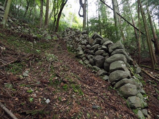 高取城 登り石垣を下から見上げる(本荘良智)